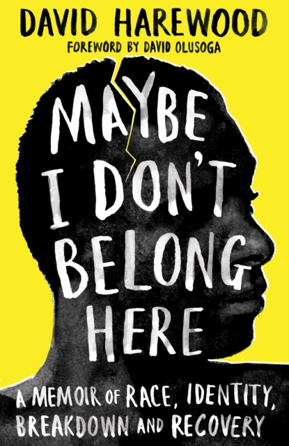 Maybe I Don't Belong Here : A Memoir of Race, Identity, Breakdown and Recovery