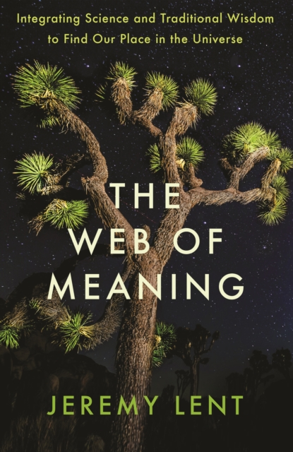 The Web of Meaning : Integrating Science and Traditional Wisdom to Find Our Place in the Universe