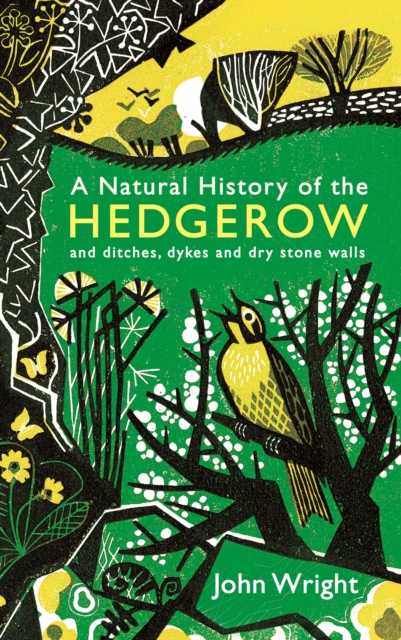 A Natural History of the Hedgerow : and ditches, dykes and dry stone walls